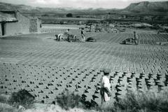 Paquita-Perez_03_Ventorrillo-1947