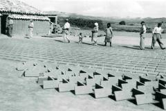 Paquita-Perez_05_Ventorrillo-1947