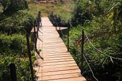 Puente-de-tablas-en-el-rio-Huerva