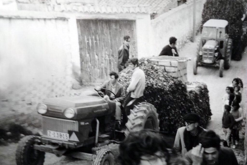 Las carrozas en Botorrita
